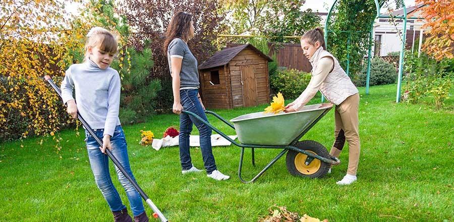 Gartenpflege und Gartenarbeiten