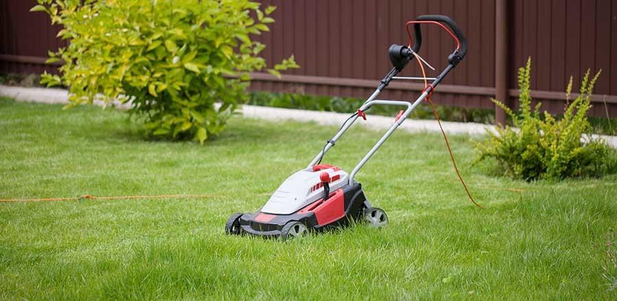 So wird der Rasen schön